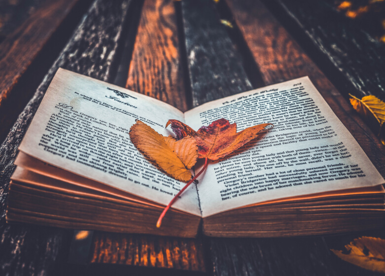 Book Quotes: The Great World Of Words