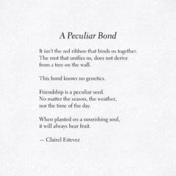 A Peculiar Bond. Beautiful words, love and friendship poem, poems, poetry by poet and writer Clairel Estevez