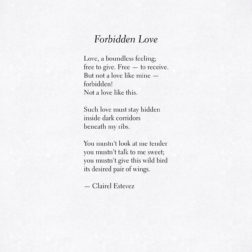 Forbidden Love. Inspirational poetry about love, life and beautiful words, poem, poems, by poet and writer Clairel Estevez